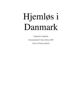 Projektopgave om hjemløse i Danmark
